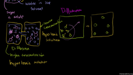 Cells and cell division : Diffusion and ... Volume Science & Economics series by Sal Khan