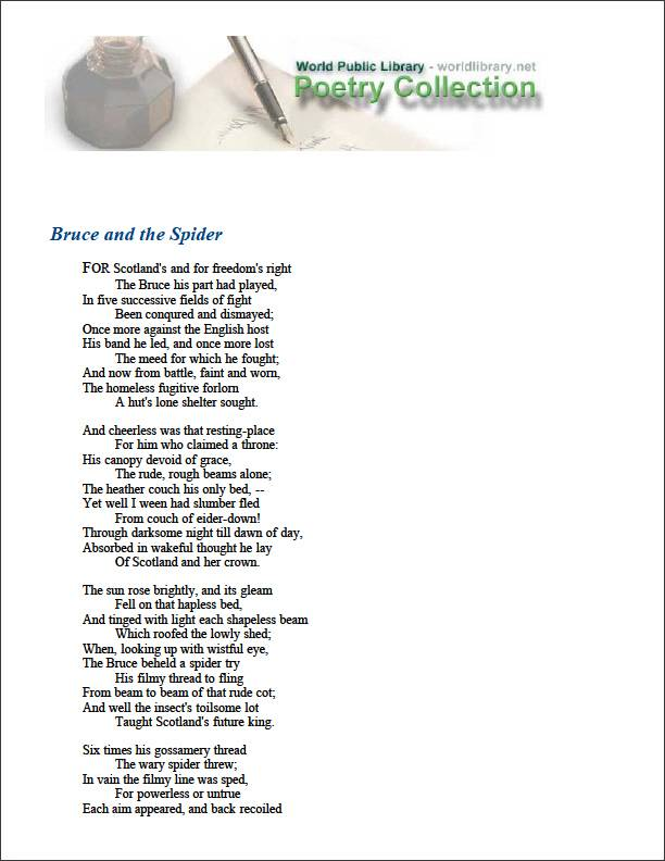 Bruce and the Spider by Barton, Bernard