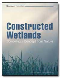 Environews-Constructed Wetlands Innovati... by Tenenbaum, David J.