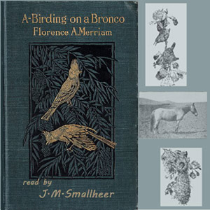 A-Birding on a Bronco by Merriam, Florence A.