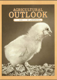 Agricultural Outlook : July 1986 Volume Issue July 1986 by Usda