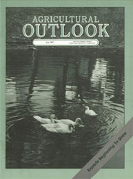 Agricultural Outlook : July 1987 Volume Issue July 1987 by Usda