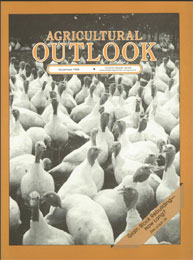 Agricultural Outlook : November 1988 Volume Issue November 1988 by Usda