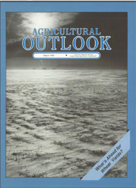 Agricultural Outlook : March 1989 Volume Issue March 1989 by Usda