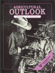 Agricultural Outlook : November 1989 Volume Issue November 1989 by Usda
