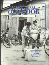 Agricultural Outlook : March 1991 Volume Issue March 1991 by Usda