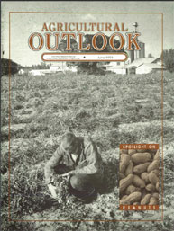 Agricultural Outlook : June 1991 Volume Issue June 1991 by Usda