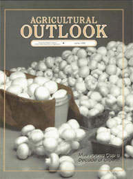 Agricultural Outlook : June 1992 Volume Issue June 1992 by Usda