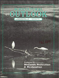 Agricultural Outlook : September 1993 Volume Issue September 1993 by Usda