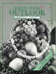 Agricultural Outlook : November 1994 Volume Issue November 1994 by Usda