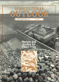 Agricultural Outlook : July 1996 Volume Issue July 1996 by Usda