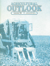 Agricultural Outlook : November 1980 Volume Issue November 1980 by Usda
