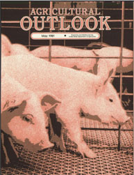 Agricultural Outlook : May 1981 Volume Issue May 1981 by Usda
