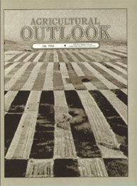 Agricultural Outlook : July 1982 Volume Issue July 1982 by Usda