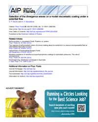 Physics of Fluids : Selection of the div... Volume Issue : September 2008 by V. P. Reutov and G. V. Rybushkina