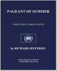Pageant of Summer by Jefferies, Richard