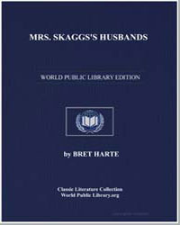 Mrs. Skaggs's Husbands by Harte, Brett