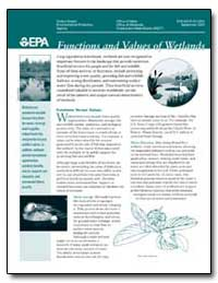 Functions and Values of Wetlands by Environmental Protection Agency