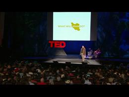 TEDtalks Conference 2009 : Bruce Bueno d... by Bruce Bueno