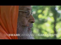 TEDtalks Chautauqua Institution : Swami ... by Swami Dayananda Saraswati